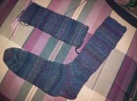 Ds_socks