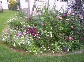 garden-august04