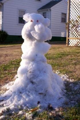 Snowbear_1