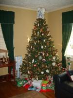Tree2006